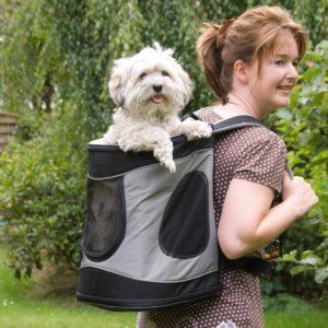Ein Rucksack ist für Hund und Träger angenehm.