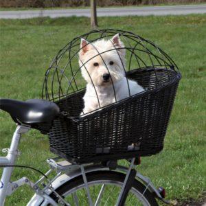 Auch in einem Korb auf dem Gepäckträger fühlt sich ein kleiner Hund gut aufgehoben.